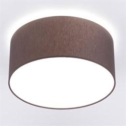 Потолочный светильник Cameron 9686