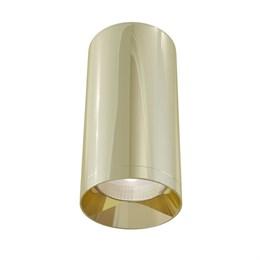 Точечный светильник Alfa C010CL-01G