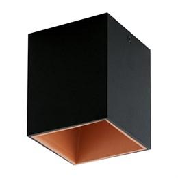 Потолочный светильник Polasso 94496