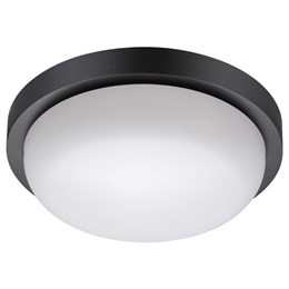 Потолочный светильник уличный Opal 358017