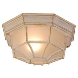Потолочный светильник уличный Perseus 31210