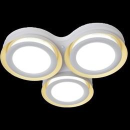 Потолочный светильник  1017