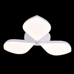 Потолочный светильник  0846